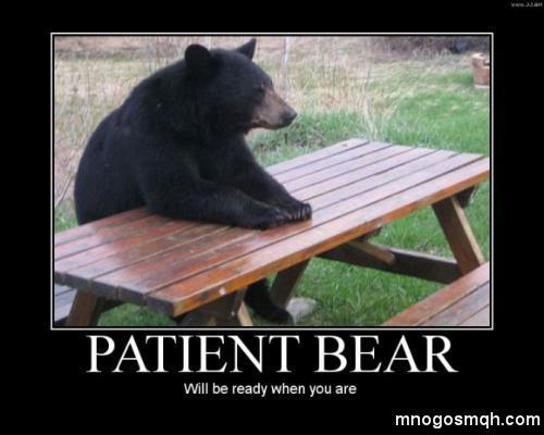 мечка на заведение