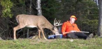 вицове за ловци