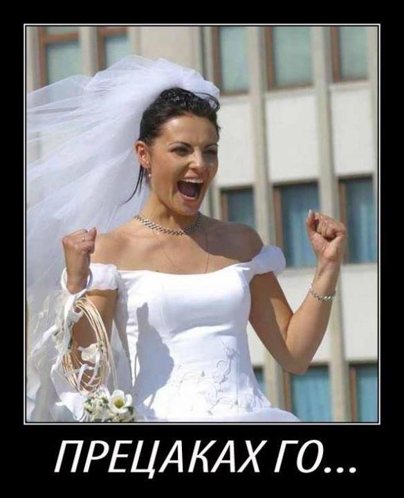 Bulka 243x300 най смешните снимки за 2011